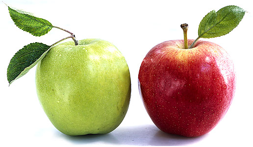 Яблоки вернули экспортеру