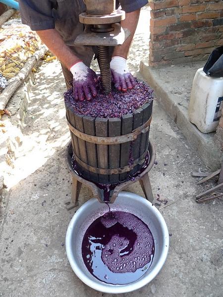 """Как делают молдавское вино? (ФОТО) """"Страна советов"""""""